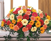 Uplifting Thoughts Casket Spray in North York, Ontario, Aprile Florist