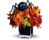 Teleflora's Spooky Sweet in Dallas TX, Petals & Stems Florist