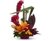 Teleflora's Tropical Bliss in Dallas TX, Petals & Stems Florist