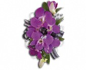 Purple Promise Wristlet in Charlotte NC, Starclaire House Of Flowers Florist
