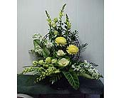 Sentimental Rememberance* in Chattanooga, Tennessee, Chattanooga Florist 877-698-3303
