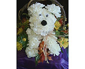� Doggone� Adorable Bouquet in Johnstown PA, B & B Floral