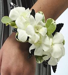 Pure White Orchid Corsage in Perrysburg & Toledo OH  OH, Ken's Flower Shops