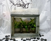 GLASS HOUSE TERRARIUM in Pittsburgh PA, Harolds Flower Shop