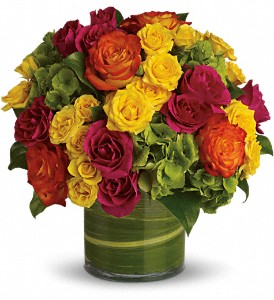 Blossoms in Vogue in Dallas TX, Petals & Stems Florist
