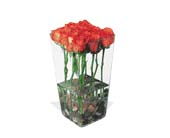 Orange Roses with River Rocks in Dallas TX, Petals & Stems Florist