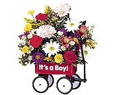 It's a Boy Wagon in Dallas TX, Petals & Stems Florist