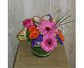 Sweetness in Dallas TX, Petals & Stems Florist
