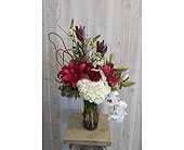 Lola in Dallas TX, Petals & Stems Florist