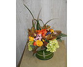 Kandy in Dallas TX, Petals & Stems Florist