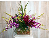 Splash in Dallas TX, Petals & Stems Florist