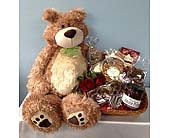 Large Teddy Bear with Chocolates Galore in Portland OR, Portland Coffee Shop