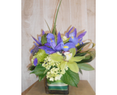 Relax in Dallas TX, Petals & Stems Florist