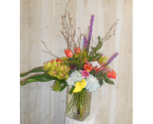 Color Burst in Dallas TX, Petals & Stems Florist
