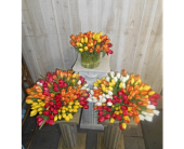 1000 in Dallas TX, Petals & Stems Florist