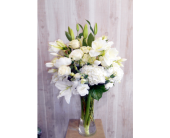 Omega in Dallas TX, Petals & Stems Florist