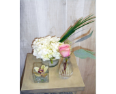 PSF-3 in Dallas TX, Petals & Stems Florist