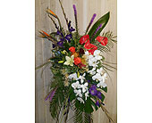 Yours Today and Always in Dallas TX, Petals & Stems Florist
