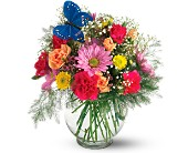 Teleflora's Butterfly & Blossoms Vase in Dallas TX, Petals & Stems Florist