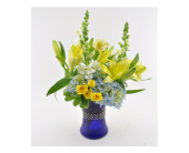 Bundle of Joy-Boy in Mesa AZ, Desert Blooms Floral Design