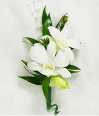 White Orchid Boutonniere in Perrysburg & Toledo OH  OH, Ken's Flower Shops