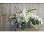 Flow in Dallas TX, Petals & Stems Florist