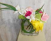 Happy Days in Dallas TX, Petals & Stems Florist