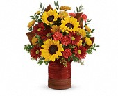 Teleflora's Sunshine Crock Bouquet in Charlotte NC, Starclaire House Of Flowers Florist