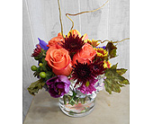 Sprung to Fall in Dallas TX, Petals & Stems Florist