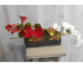 Earth, Wind and Fire in Dallas TX, Petals & Stems Florist