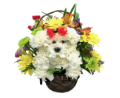 Puppy Love Bouquet in Wichita KS, Tillie's Flower Shop