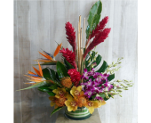 In The Jungle in Dallas TX, Petals & Stems Florist