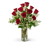 Swoon Over Me Dozen Red Roses in Wichita KS, Tillie's Flower Shop