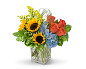 Summer Fun in Methuen MA, Martins Flowers & Gifts