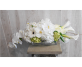 Roll on Fluffy in Dallas TX, Petals & Stems Florist