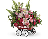 Teleflora's Welcome Beautiful Bouquet, picture