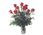 1 Dozen Red Roses in Dallas TX, Petals & Stems Florist