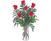 1/2 Dozen Roses in Dallas TX, Petals & Stems Florist