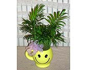 Smile on the desk. in Dallas TX, Petals & Stems Florist