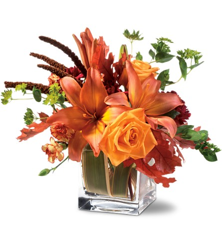 Teleflora's Orange Spice in Birmingham AL, Norton's Florist