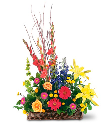 Sunshine Basket in Brownsburg IN, Queen Anne's Lace Flowers & Gifts