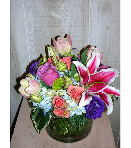 Stacy's Spring in Dallas TX, Petals & Stems Florist