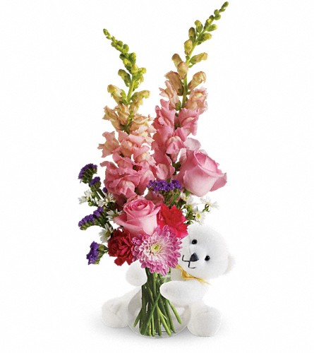 Teleflora's Bear Hug Bear with Pink Roses in Chattanooga TN, Chattanooga Florist 877-698-3303