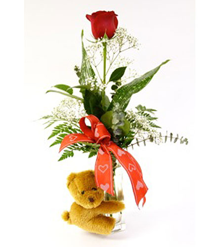 Pam's Exclusive Snuggly Bear Rose in Kingston ON, Pam's Flower Garden