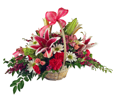 Sweetness Basket in Indianapolis IN, McNamara Florist