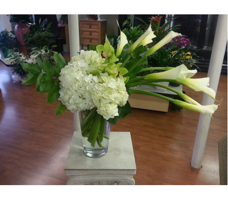 In Vogue in Charlotte NC, Starclaire House Of Flowers Florist