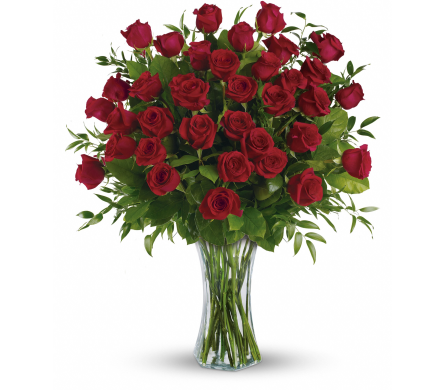 Breathtaking Beauty - 3 Dozen Red Roses in Wichita KS, Tillie's Flower Shop