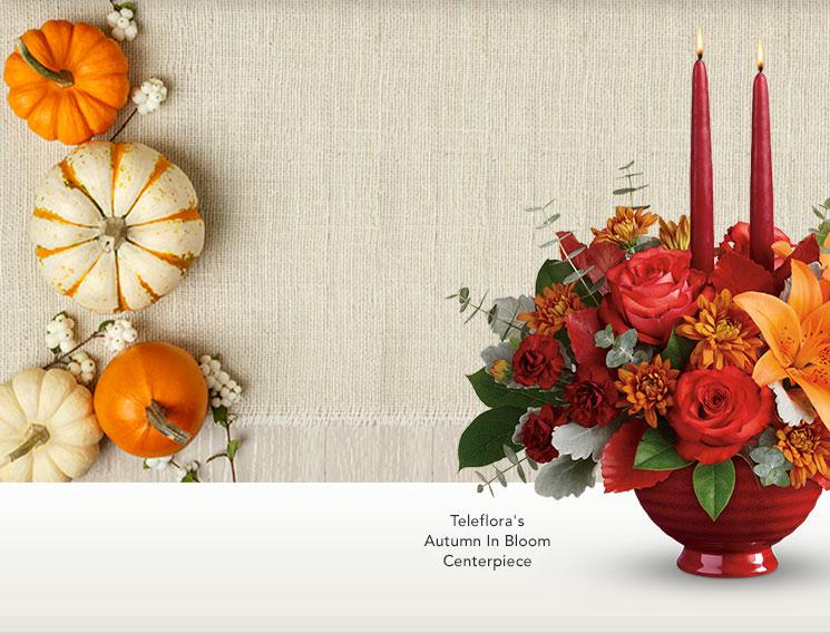 telefloras autumn in bloom