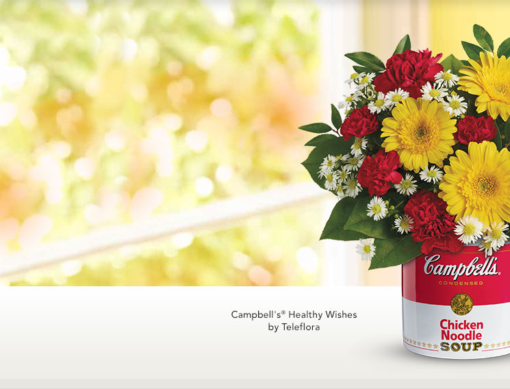 campbells healthy wishes