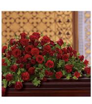 Red Rose Reverence